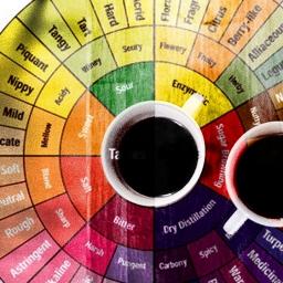 Kahvenizde Bilmeniz Gereken 4 Tadım Terimi